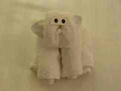 01 Monkey towel animal