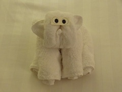 01 Monkey towel animal