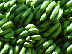 02 Bananas in Mollenda