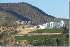 08 Vina Indomita vineyards near Valparaiso