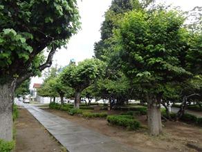 09 Plaza de Armas in Puerto Aisen
