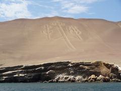 15 Giant Candelabra on hillside near Puerto San Martin