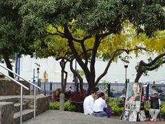 21 Portrait artist under trees on Malencon