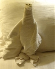 24 Towel animal on pillow (seal, perhaps)