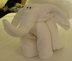 35 Elephant towel animal