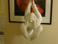 44 Ape towel animal