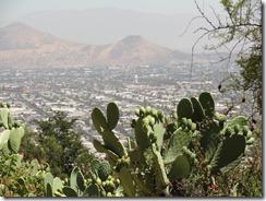 50 Cactus & Santiago overlook near restaurant