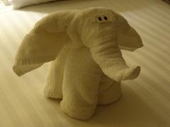 90 Elephant towel animal