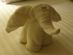 90 Elephant towel animal