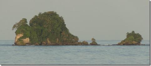Lionturtle, near Bocas Del Toro