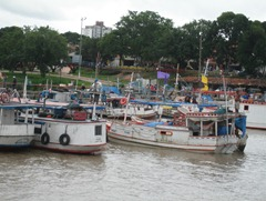 01 River boats at port of Icoaraci