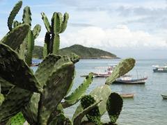 06 Cactua & Buzios harbor