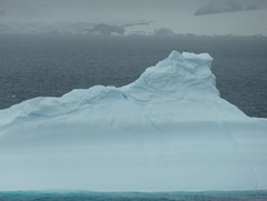 106 Iceberg with skua on top