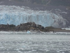 18 Amalia Glacier