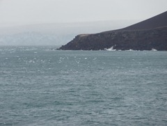 20 Penguin Island ice field