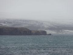 22 Penguin Island