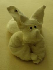 240 towel bunny