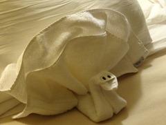 25 Towel turkey