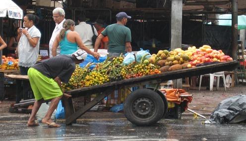 26 Fruit cart at Mercado