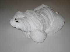 32 Towel turtle