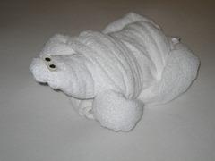 32 Towel turtle