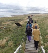 38 People walking to see penguins at Otway