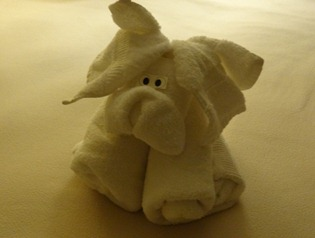 43 Towel piggie
