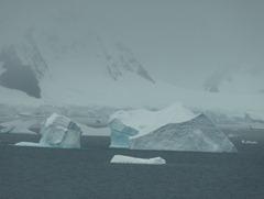 82 Icebergs