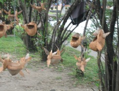 04 Coconut carvings hanging from tree