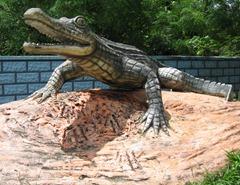 05 Alligator statue