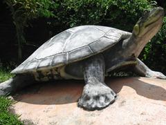 06 Turtle statue