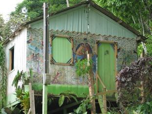 12 Parrot house