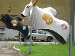 17 Boi Bumba bull telephone booths