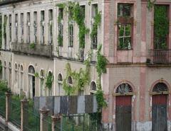 95 Overgrown bldg facades near port