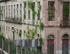 95 Overgrown bldg facades near port