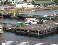 99 Floating Dock