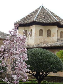 183. Alhambra, Granada