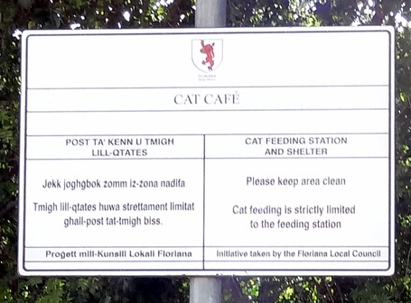 240a. Malta Valetta Cat Cafe sign