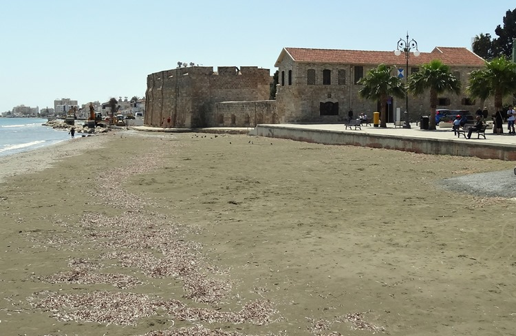 46. Larnaka