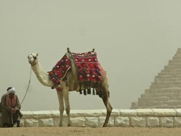 74.Giza (Pyramids)