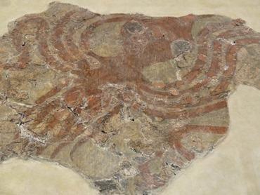97. Iraklion Crete, Archeology Museum