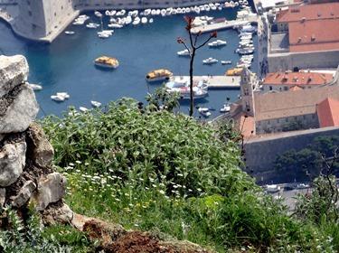 288. Dubrovnik