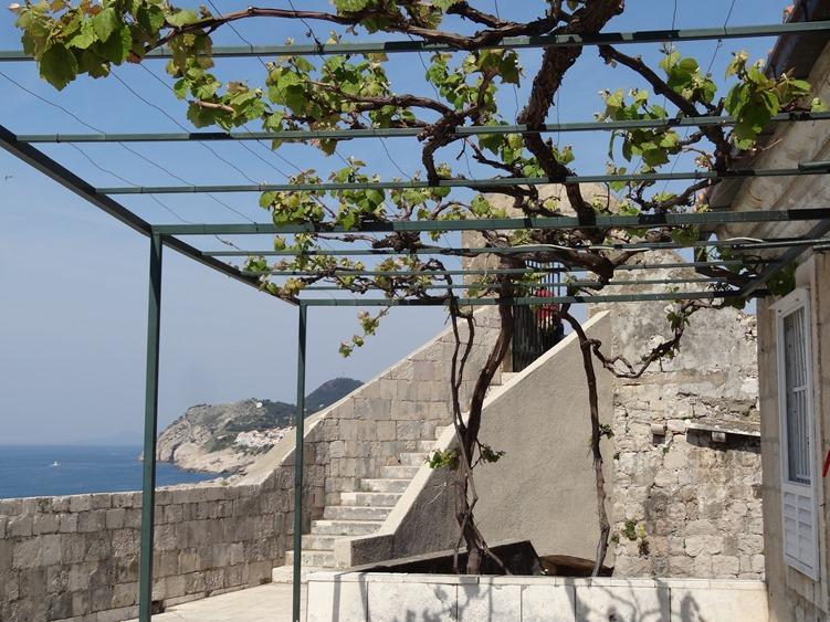 47. Dubrovnik