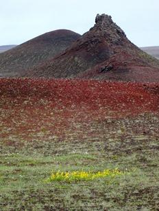 021.  Akureyri 7-22-2014