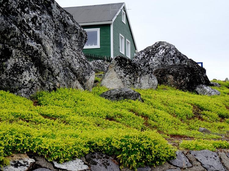 048.  Nanortalik, Greenland 7-19-2014