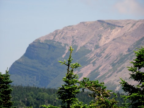 063.  Corner Brook, Newfoundland (Grand Morne Park) 7-15-2014063.  Corner Brook, Newfoundland 7-15-2014