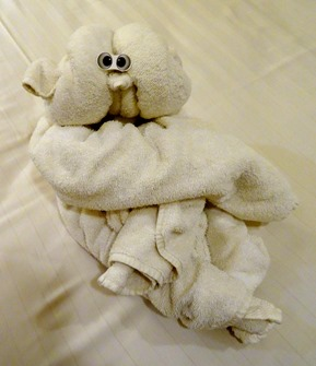 1.  Towel Animal
