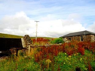 002.  Lerwick, Shetland Islands
