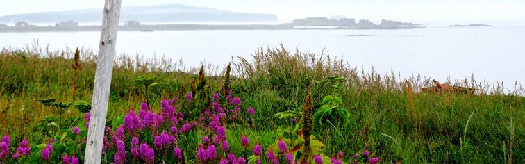 010. St. Andrews, Newfoundland