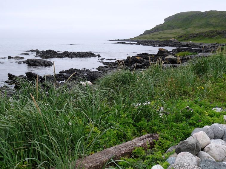 021. St. Andrews, Newfoundland